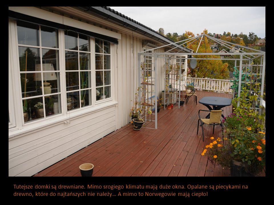 Tutejsze domki są drewniane. Mimo srogiego klimatu mają duże okna