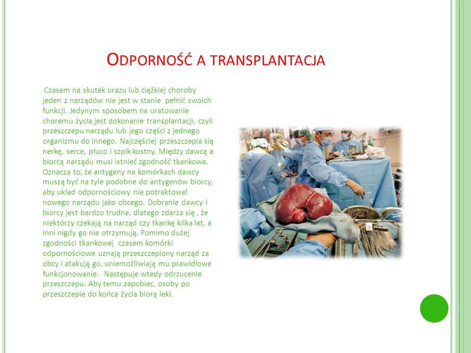 Odporność a transplantacja