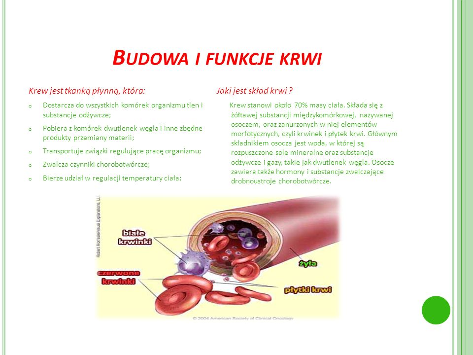 Budowa i funkcje krwi Krew jest tkanką płynną, która: