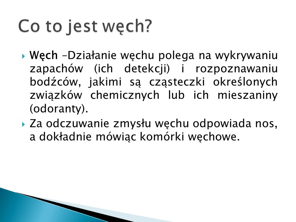 Co to jest węch