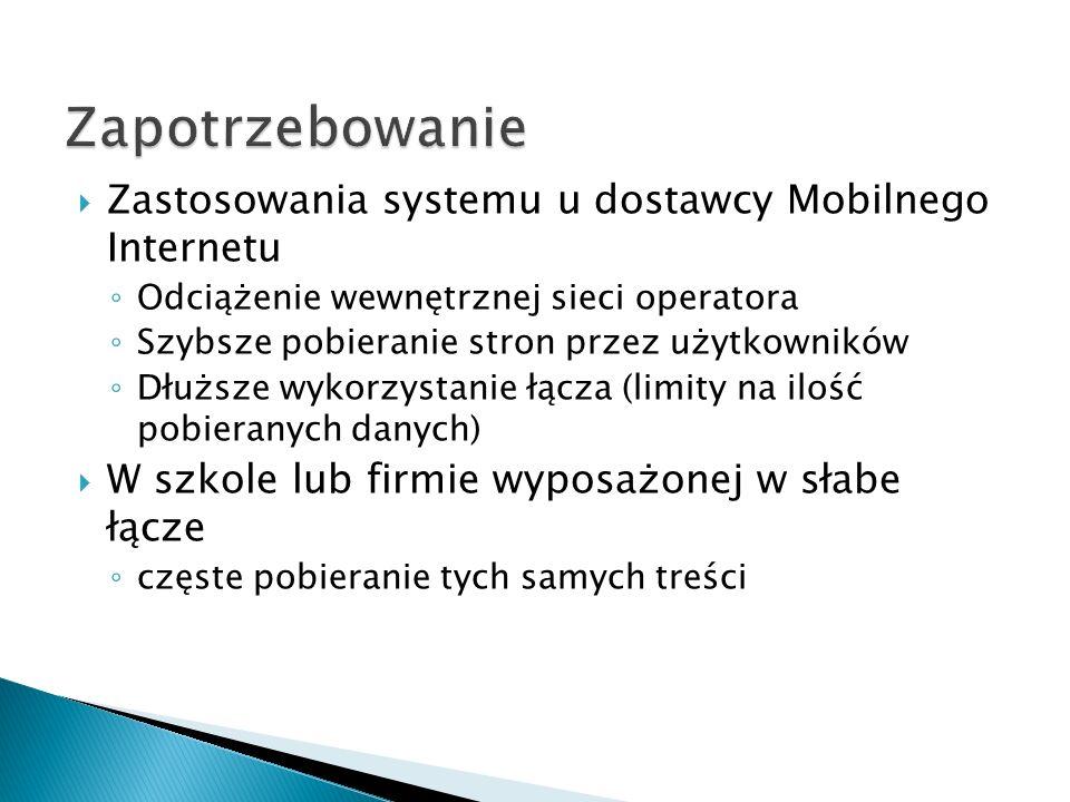 Zapotrzebowanie Zastosowania systemu u dostawcy Mobilnego Internetu