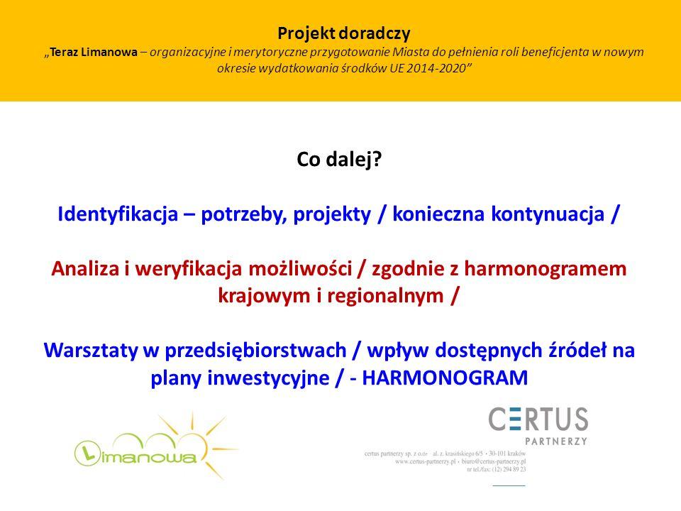 Identyfikacja – potrzeby, projekty / konieczna kontynuacja /