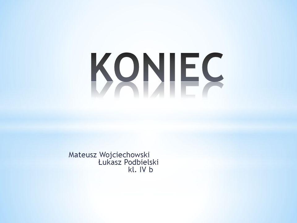 KONIEC Mateusz Wojciechowski Łukasz Podbielski kl. IV b