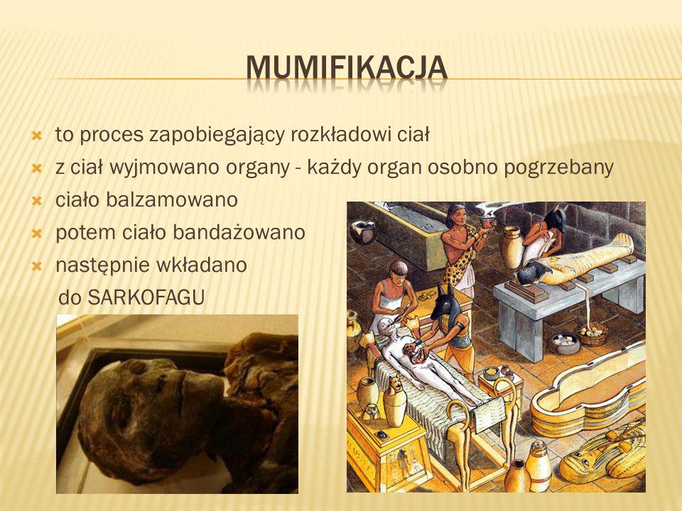 mumifikacja to proces zapobiegający rozkładowi ciał