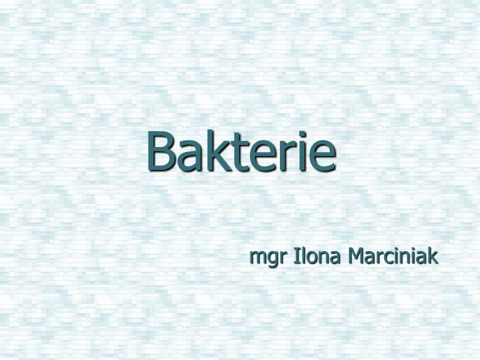 Bakterie mgr Ilona Marciniak