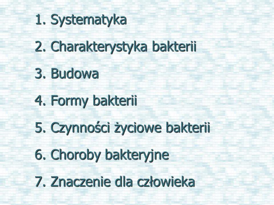 1. Systematyka 2. Charakterystyka bakterii. 3. Budowa. 4. Formy bakterii. 5. Czynności życiowe bakterii.