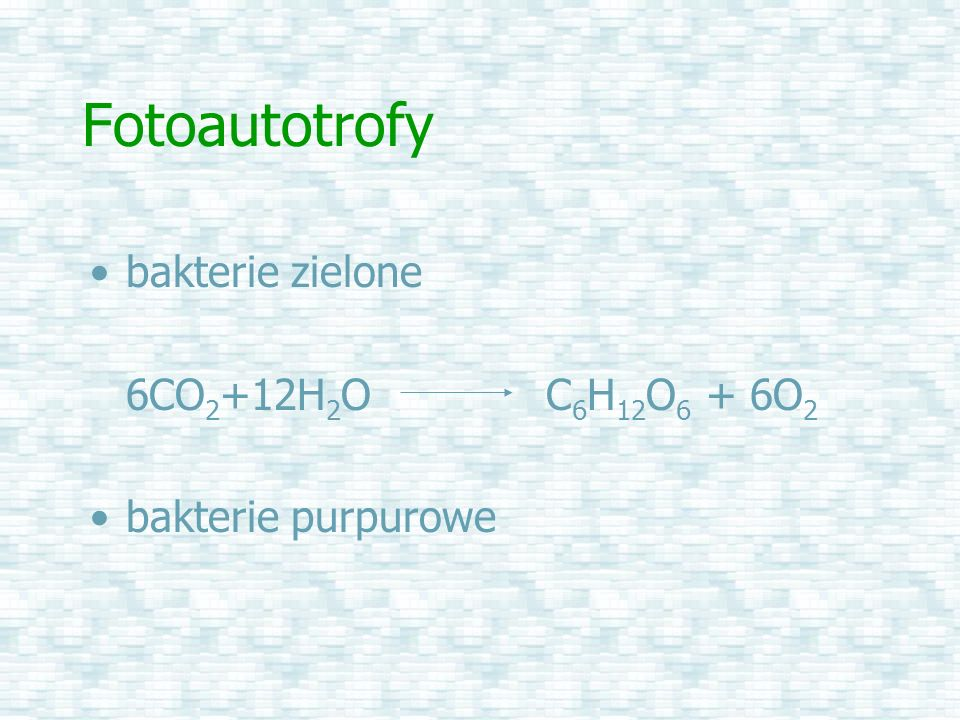 Fotoautotrofy bakterie zielone 6CO2+12H2O C6H12O6 + 6O2