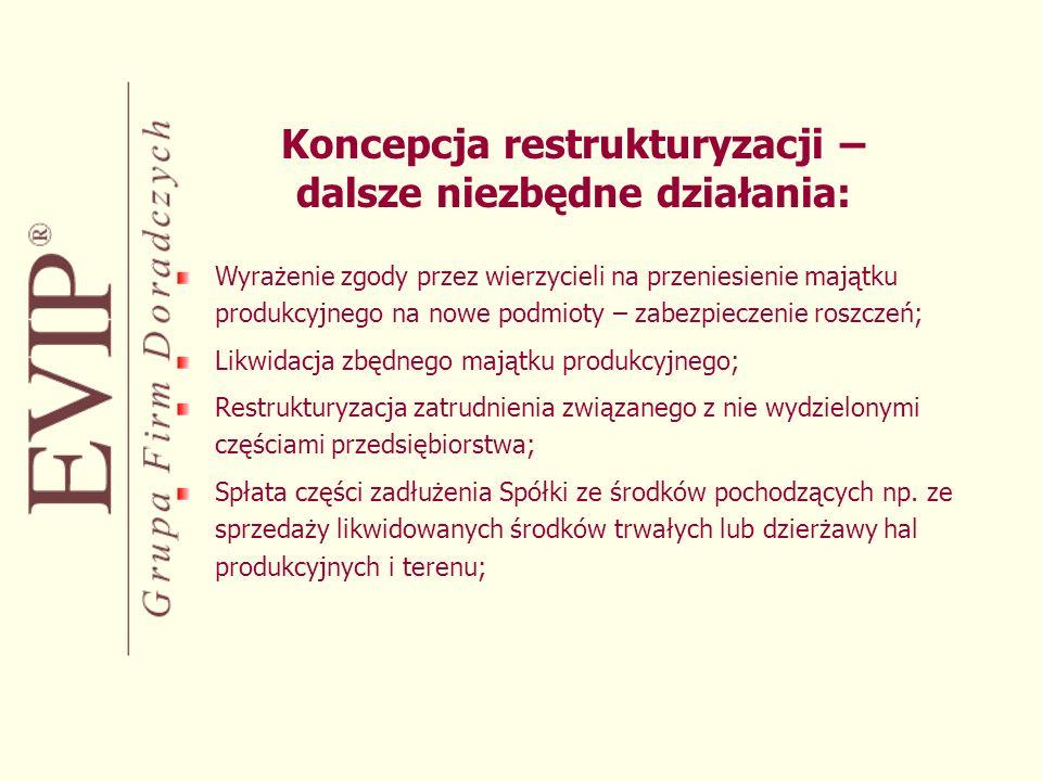 Koncepcja restrukturyzacji – dalsze niezbędne działania: