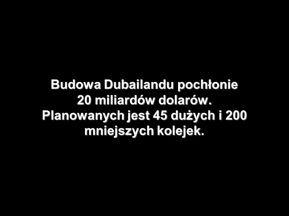 Budowa Dubailandu pochłonie 20 miliardów dolarów