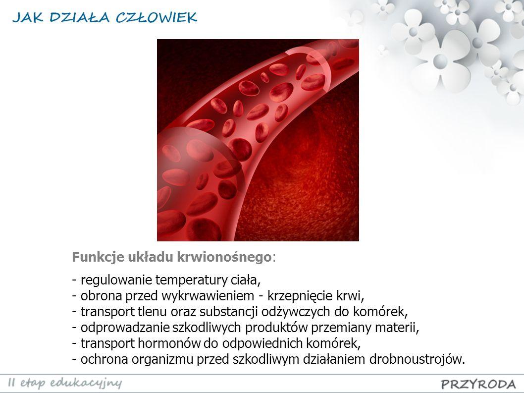 Funkcje układu krwionośnego: