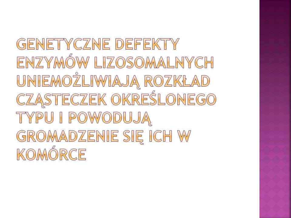 Genetyczne defekty enzymów lizosomalnych uniemożliwiają rozkład cząsteczek określonego typu i powodują gromadzenie się ich w komórce
