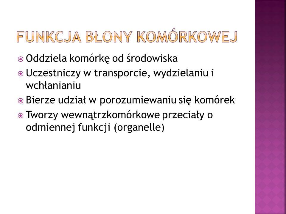 Funkcja błony komórkowej