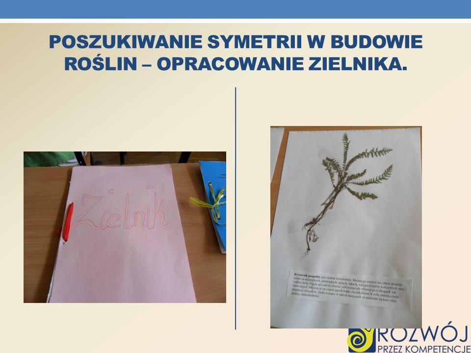 Poszukiwanie symetrii w budowie Roślin – opracowanie zielnika.