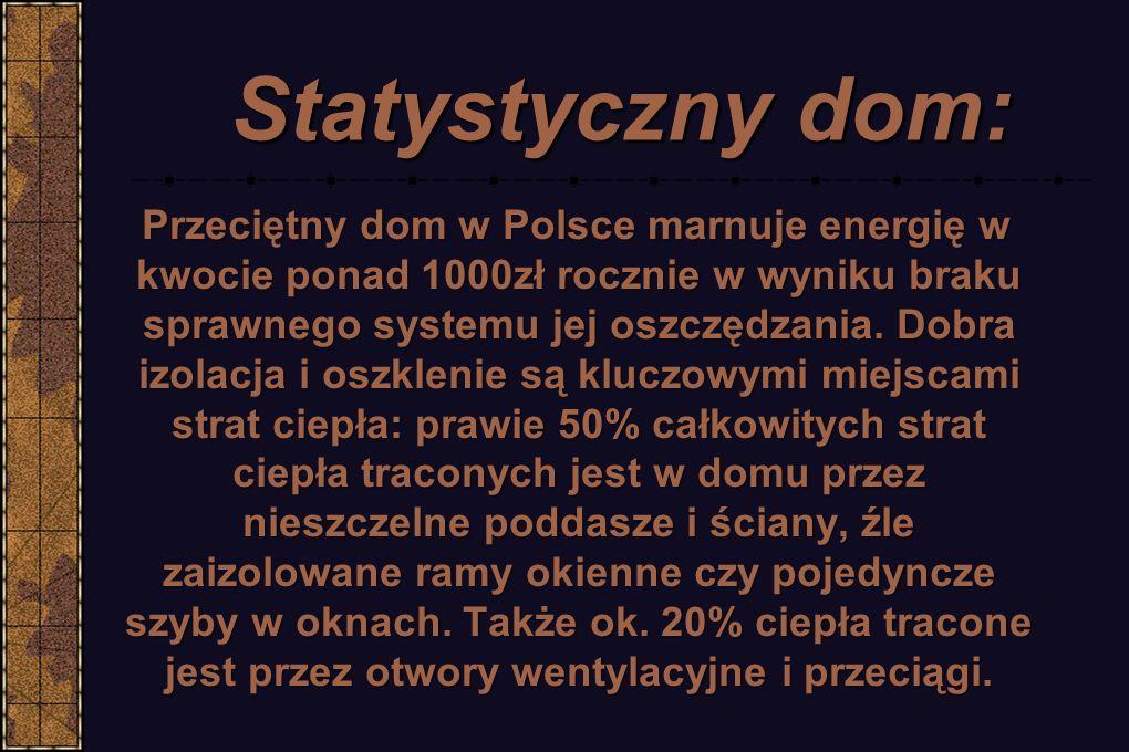 Statystyczny dom: