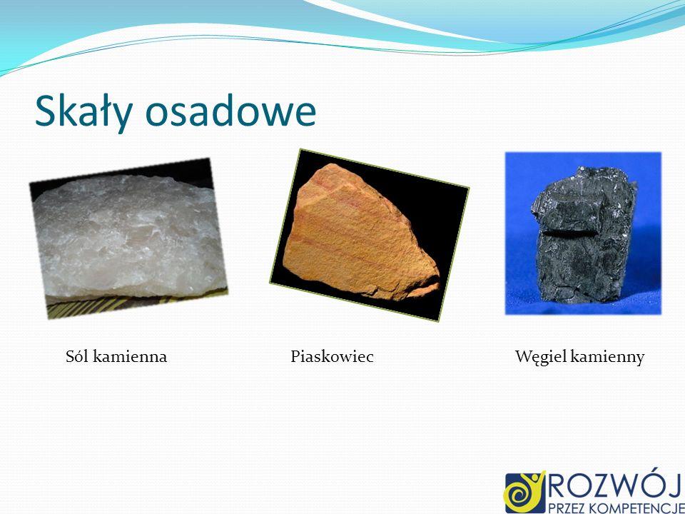Skały osadowe Sól kamienna Piaskowiec Węgiel kamienny