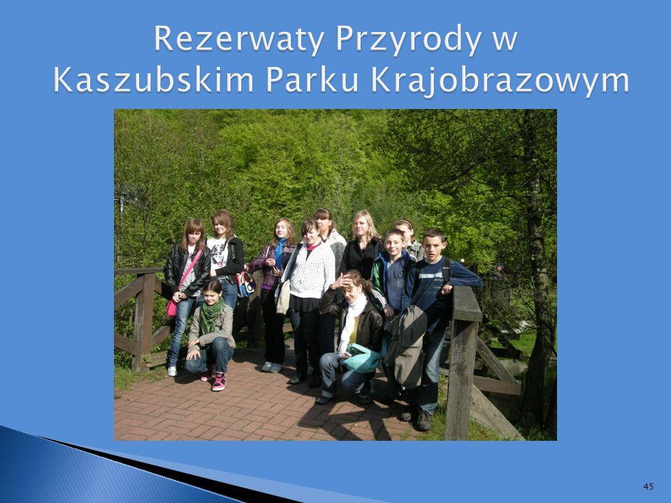 Rezerwaty Przyrody w Kaszubskim Parku Krajobrazowym