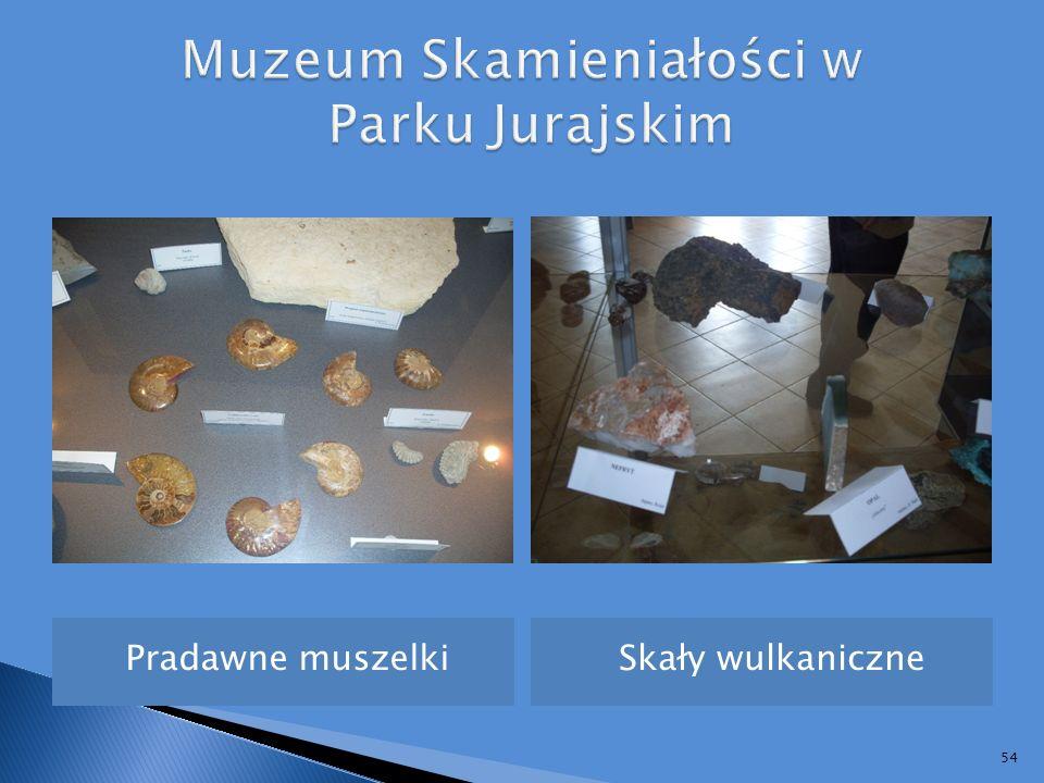 Muzeum Skamieniałości w Parku Jurajskim