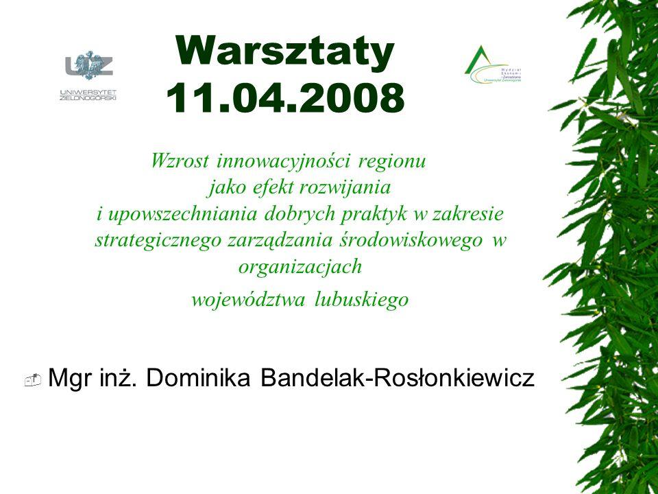 Warsztaty 11.04.2008 Mgr inż. Dominika Bandelak-Rosłonkiewicz