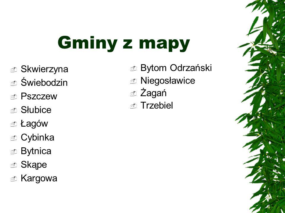 Gminy z mapy Skwierzyna Świebodzin Pszczew Słubice Łagów Cybinka