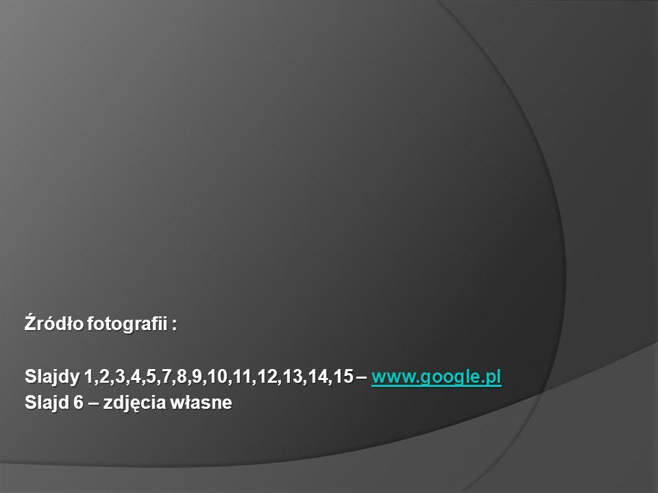 Źródło fotografii : Slajdy 1,2,3,4,5,7,8,9,10,11,12,13,14,15 – www.google.pl.