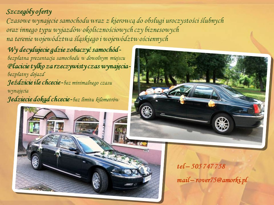 Szczegóły oferty Czasowe wynajęcie samochodu wraz z kierowcą do obsługi uroczystości ślubnych oraz innego typu wyjazdów okolicznościowych czy biznesowych na terenie województwa śląskiego i województw ościennych