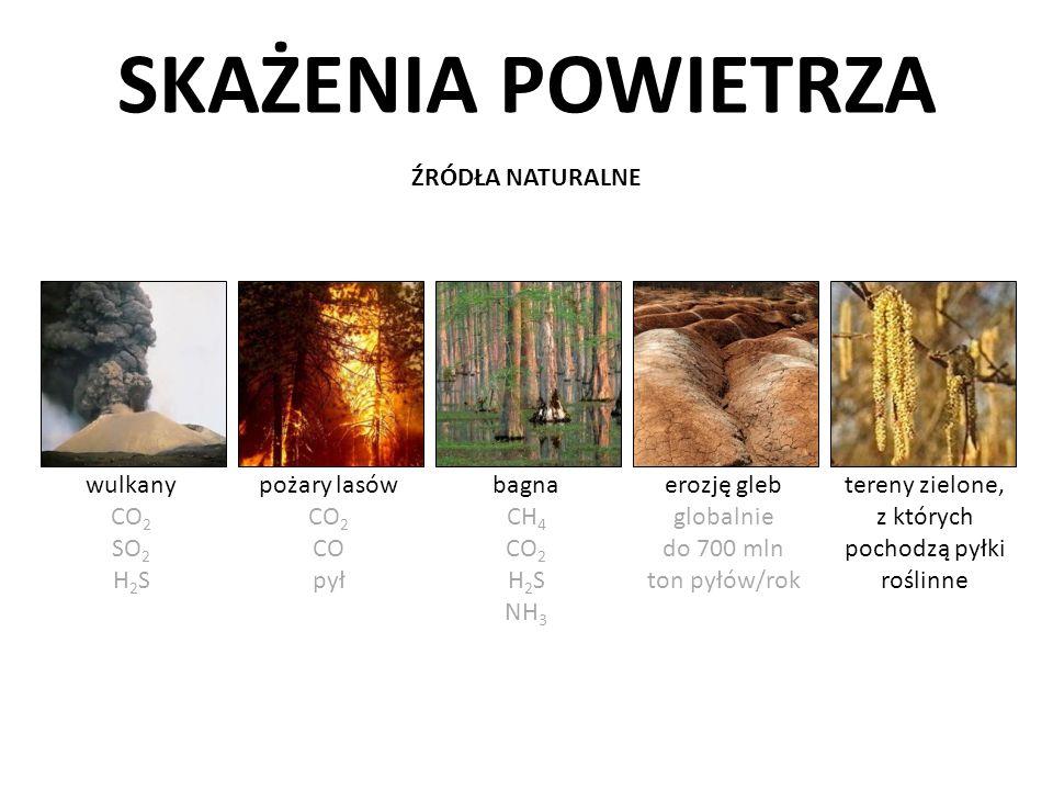 tereny zielone, z których pochodzą pyłki roślinne