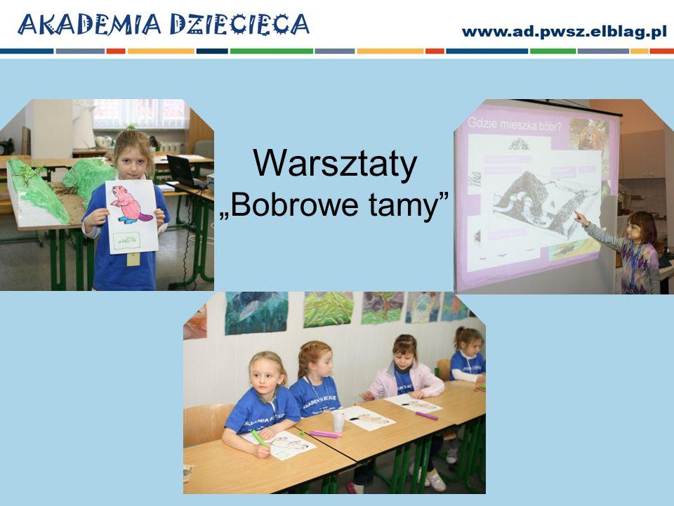 """Warsztaty """"Bobrowe tamy"""