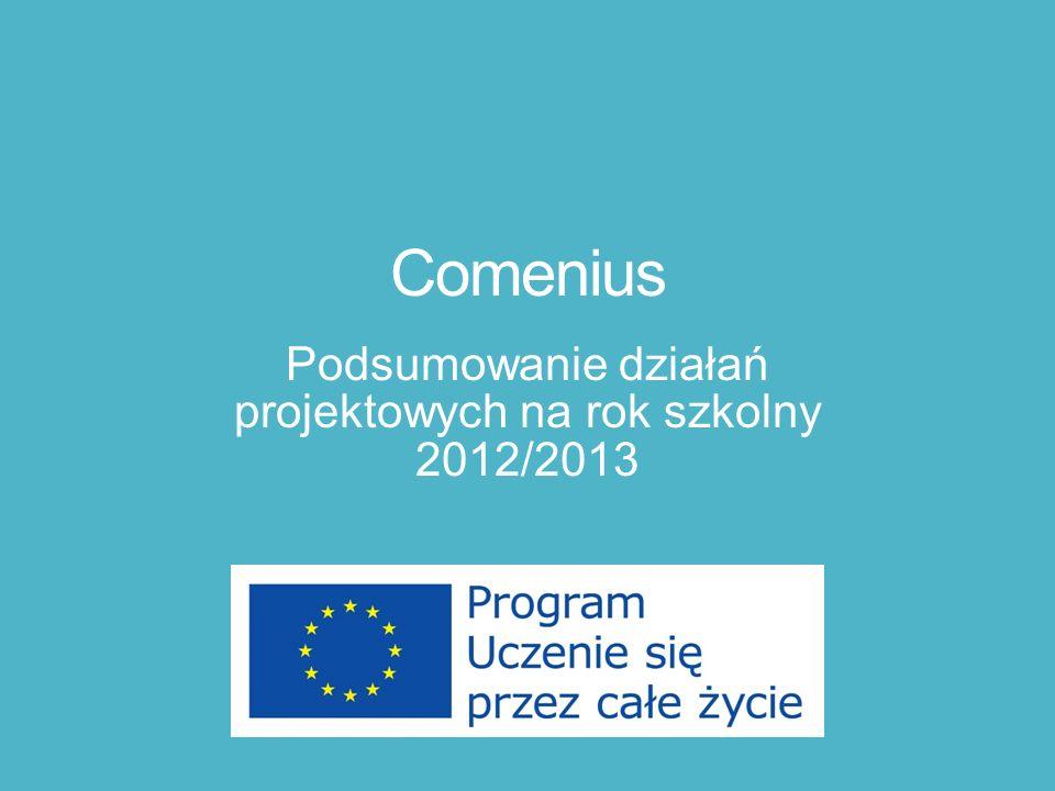 Podsumowanie działań projektowych na rok szkolny 2012/2013