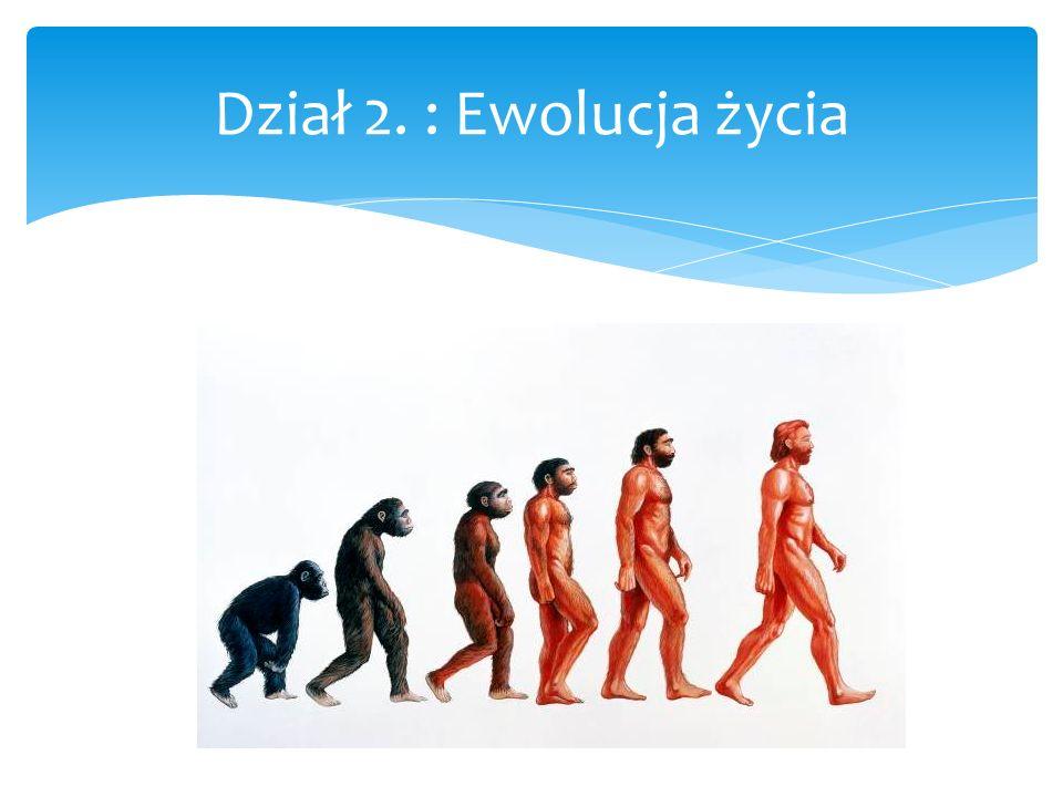 Dział 2. : Ewolucja życia