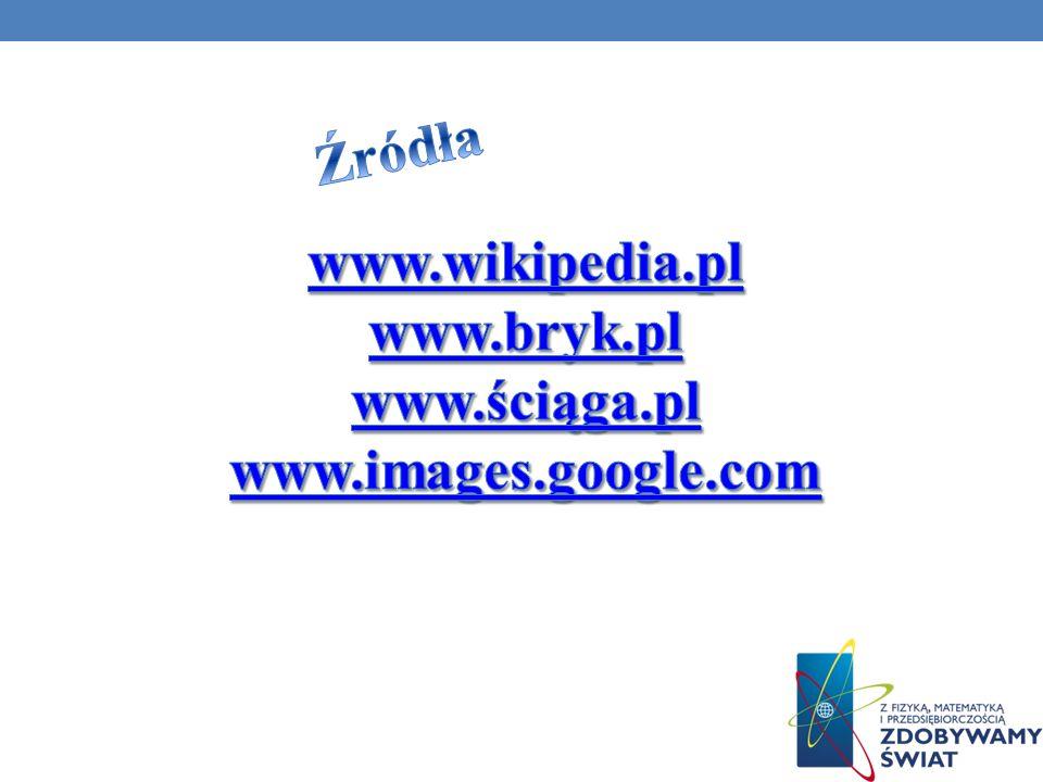 Źródła www.wikipedia.pl www.bryk.pl www.ściąga.pl www.images.google.com