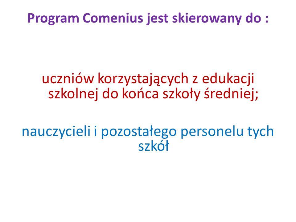 Program Comenius jest skierowany do :