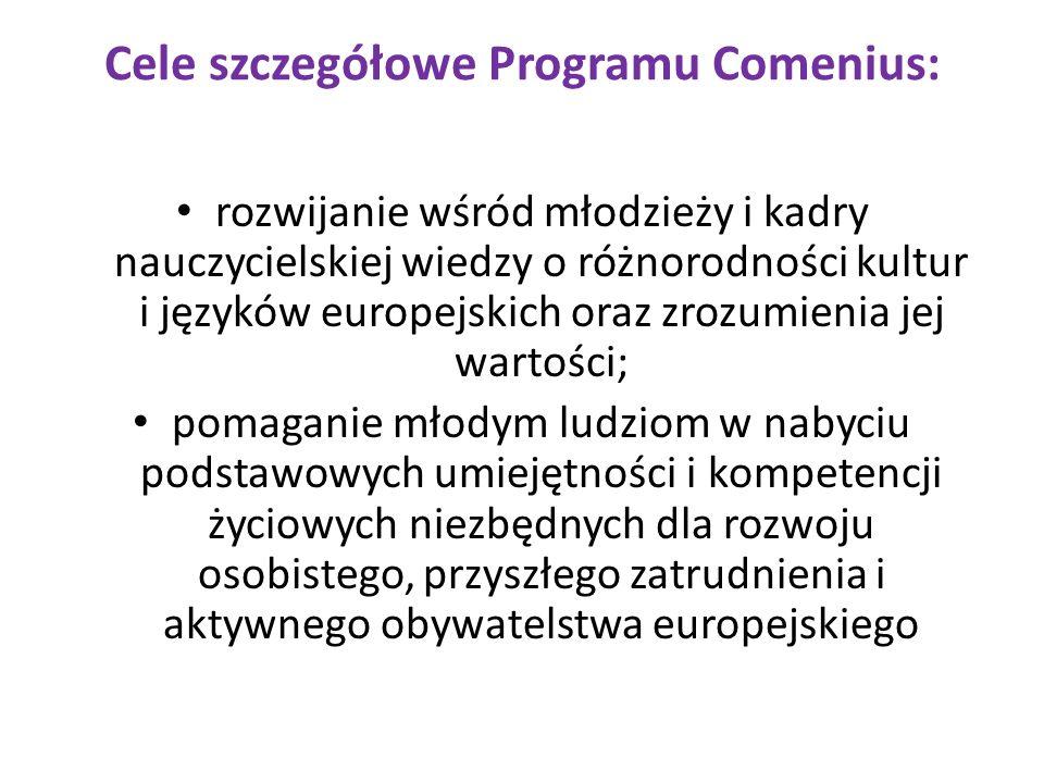 Cele szczegółowe Programu Comenius: