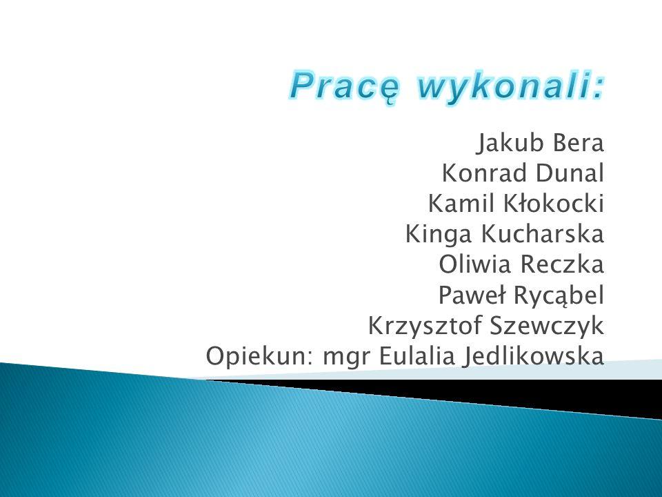 Pracę wykonali: Jakub Bera Konrad Dunal Kamil Kłokocki Kinga Kucharska