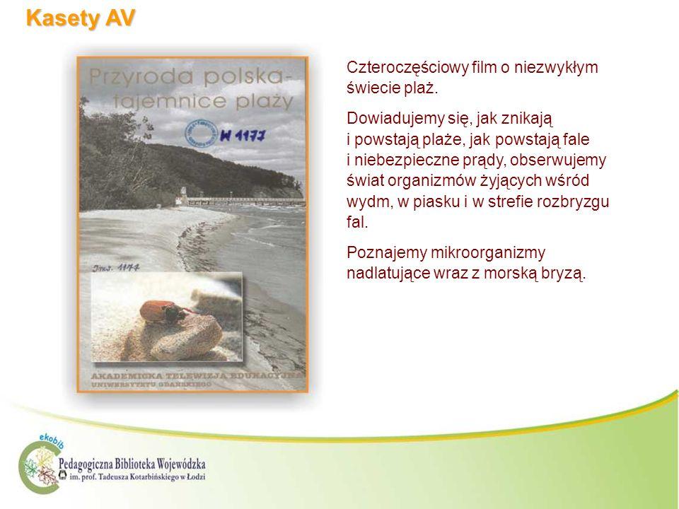 Kasety AV Czteroczęściowy film o niezwykłym świecie plaż.