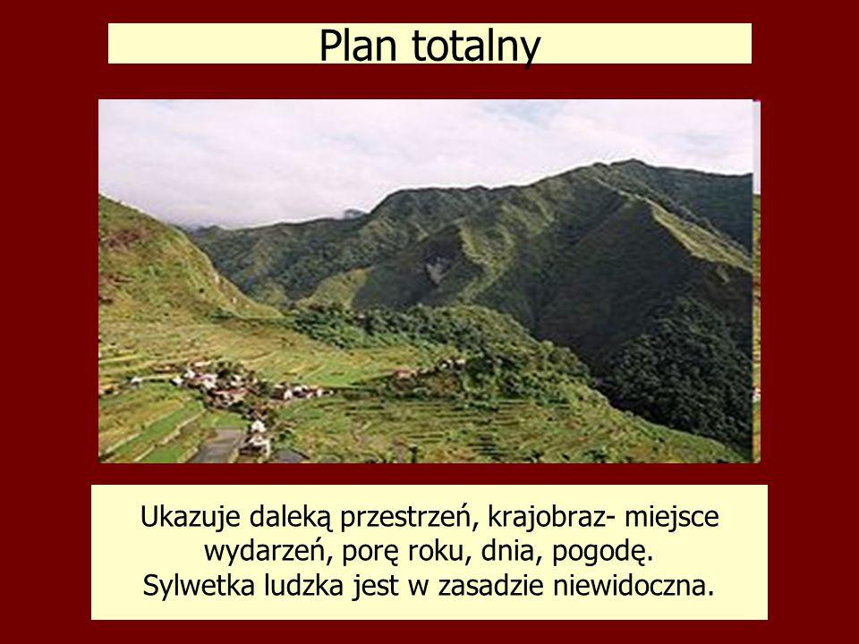 Plan totalny Ukazuje daleką przestrzeń, krajobraz- miejsce wydarzeń, porę roku, dnia, pogodę.