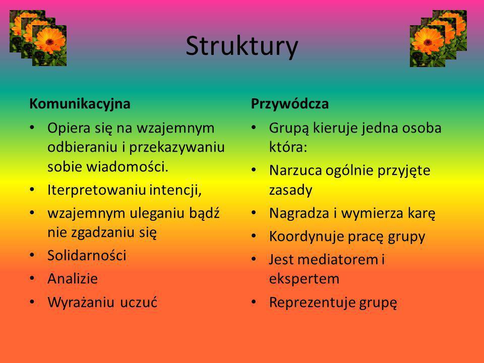 Struktury Komunikacyjna Przywódcza