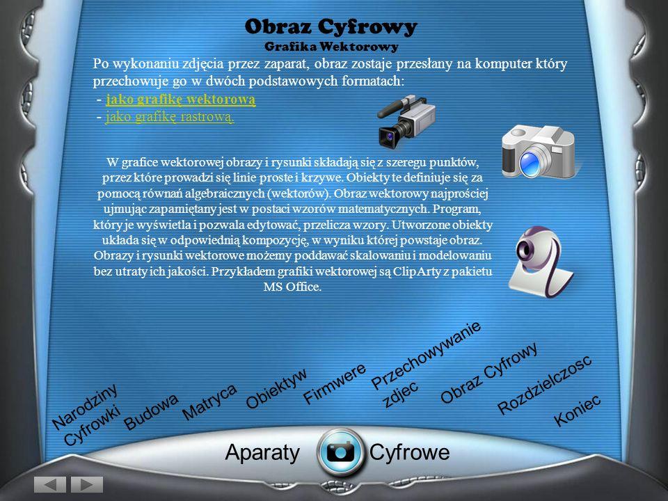 Obraz Cyfrowy Grafika Wektorowy