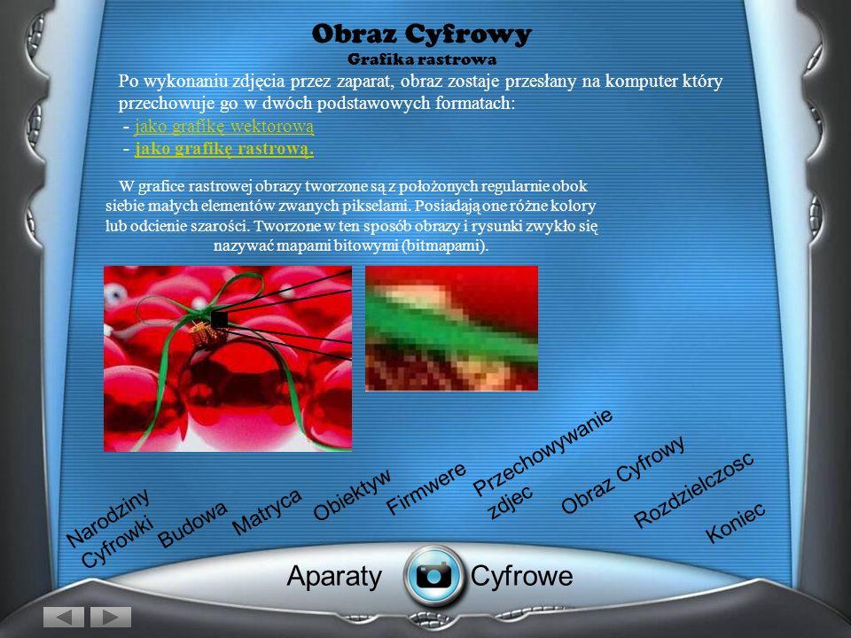 Obraz Cyfrowy Grafika rastrowa