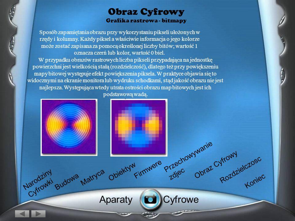 Obraz Cyfrowy Grafika rastrowa - bitmapy