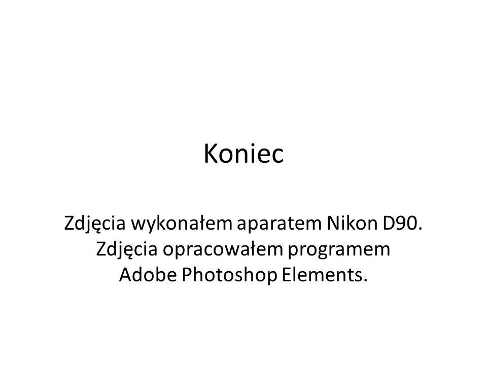 Koniec Zdjęcia wykonałem aparatem Nikon D90.