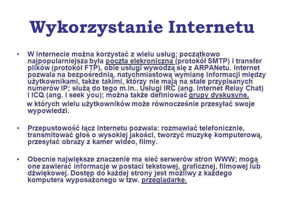Wykorzystanie Internetu