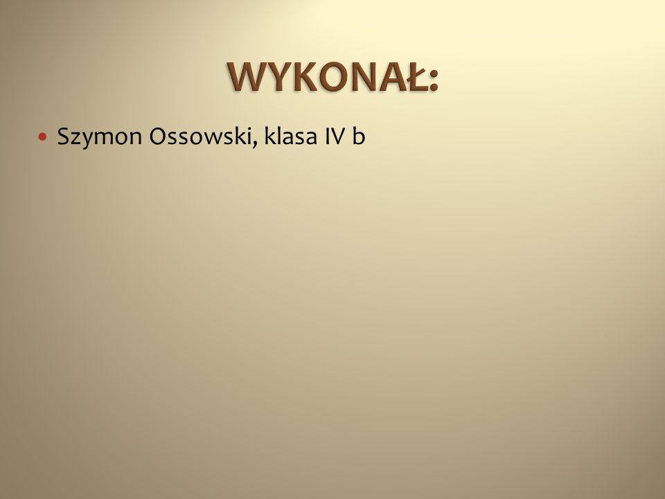 WYKONAŁ: Szymon Ossowski, klasa IV b