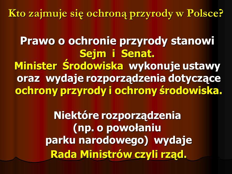 Kto zajmuje się ochroną przyrody w Polsce