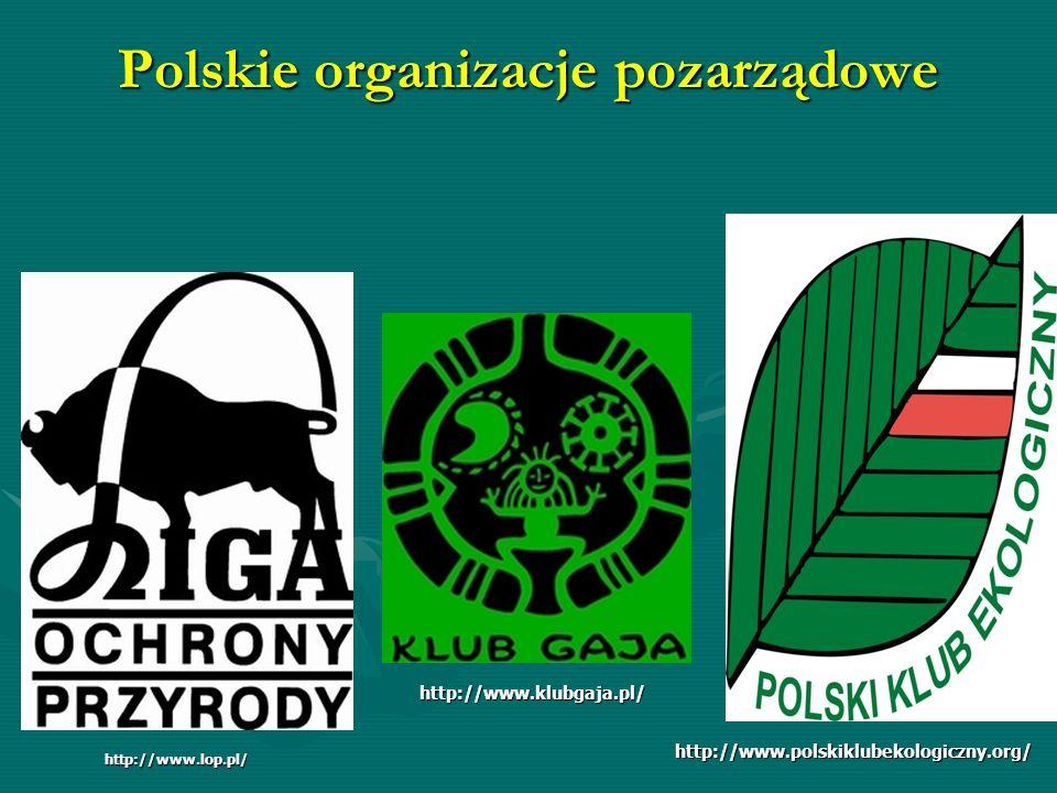 Polskie organizacje pozarządowe