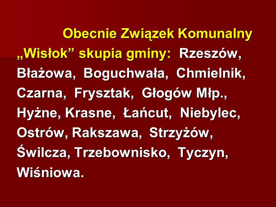 """""""Wisłok skupia gminy: Rzeszów, Błażowa, Boguchwała, Chmielnik,"""