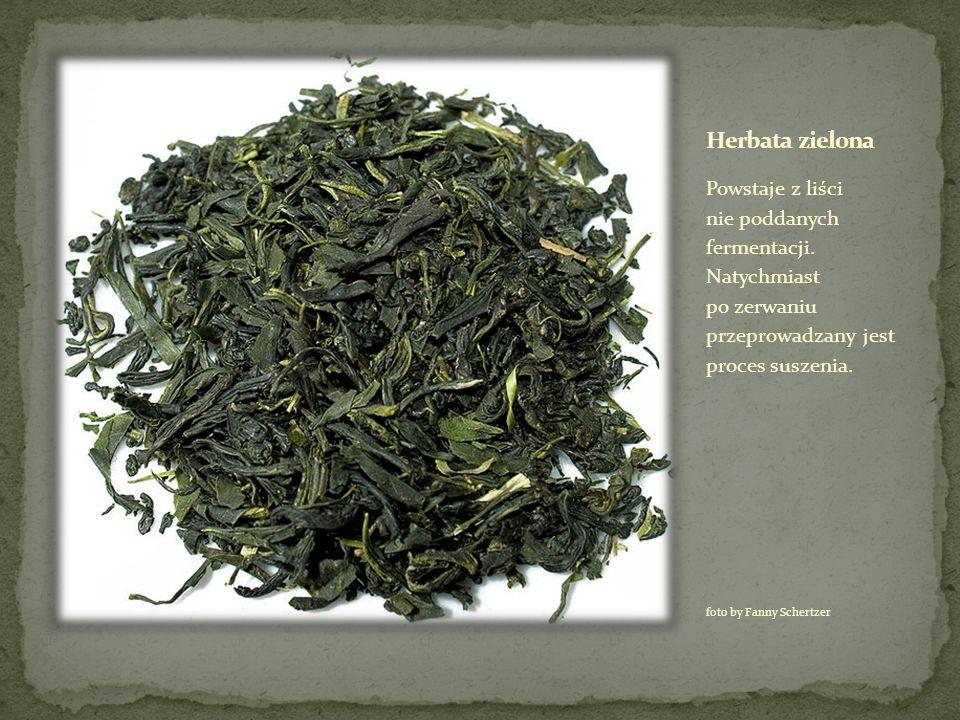 Herbata zielona Powstaje z liści nie poddanych fermentacji. Natychmiast po zerwaniu przeprowadzany jest proces suszenia.