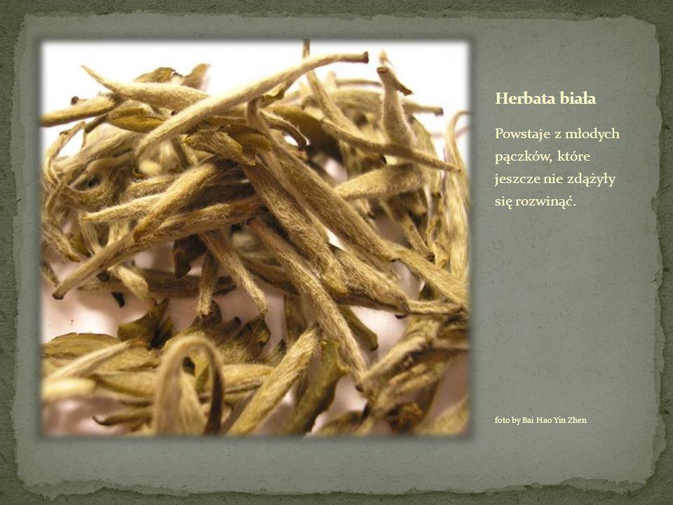 Herbata biała Powstaje z młodych pączków, które jeszcze nie zdążyły się rozwinąć.