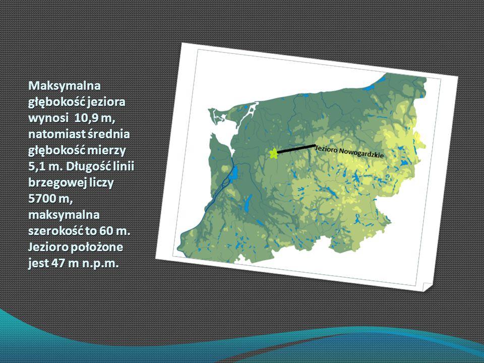 Maksymalna głębokość jeziora wynosi 10,9 m, natomiast średnia głębokość mierzy 5,1 m.