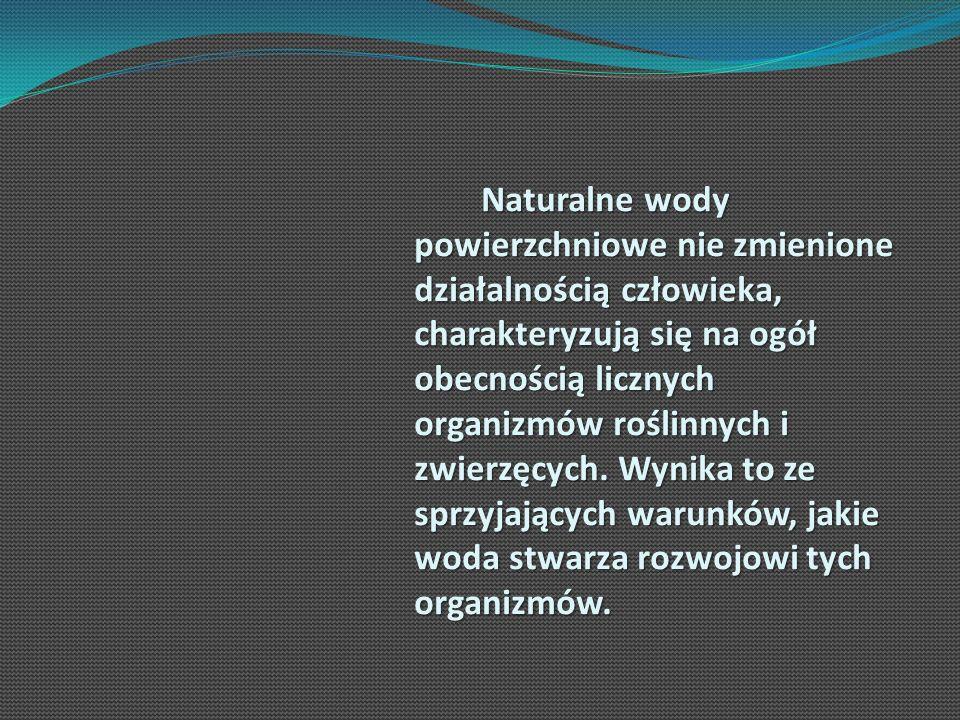 Naturalne wody powierzchniowe nie zmienione działalnością człowieka, charakteryzują się na ogół obecnością licznych organizmów roślinnych i zwierzęcych.