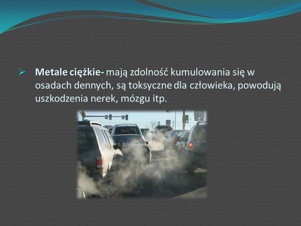 Metale ciężkie- mają zdolność kumulowania się w osadach dennych, są toksyczne dla człowieka, powodują uszkodzenia nerek, mózgu itp.